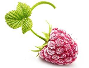 frutta surgelata gelateria dolcelinea