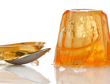 gelatine gelateria dolcelinea